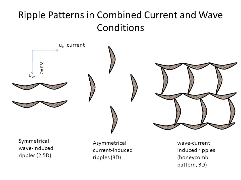 Ripple Patterns in Combined Current and Wave Conditions