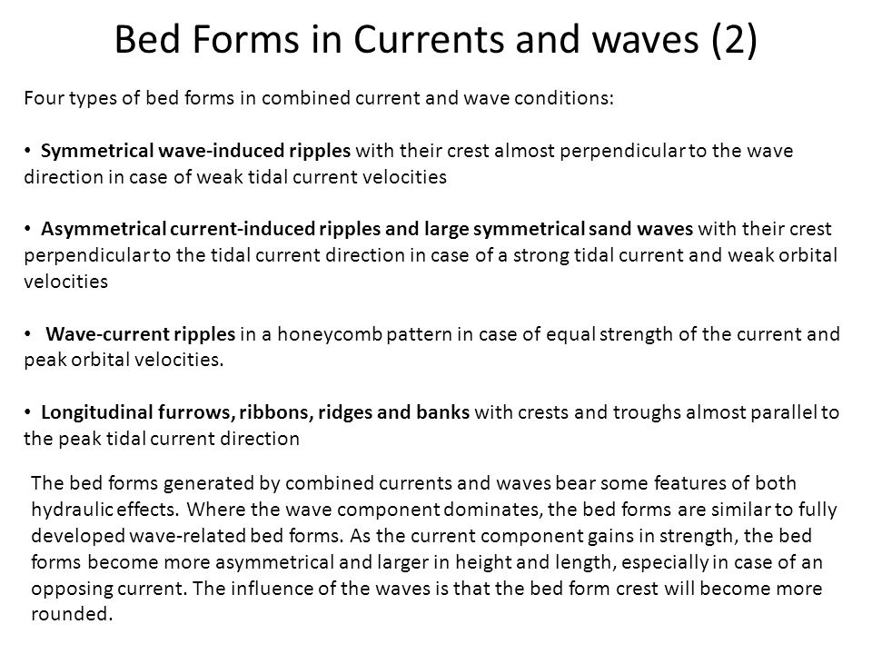 Bed Forms in Currents and waves (2)