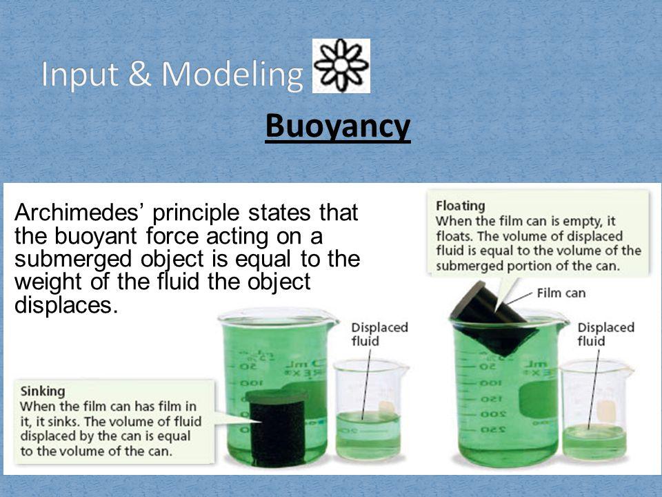 Input & Modeling Buoyancy