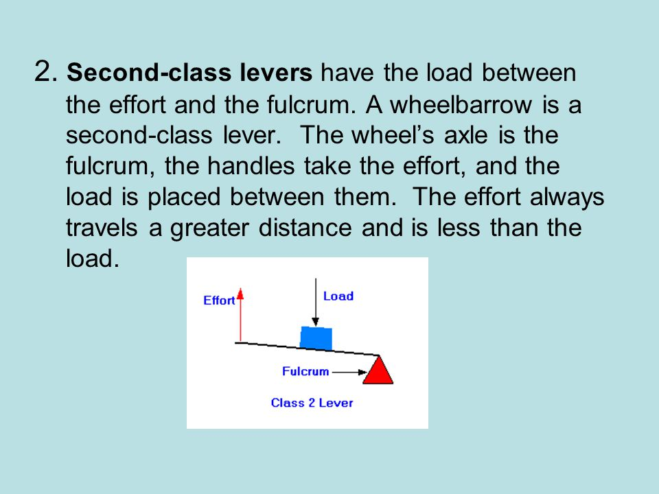 2. Second-class levers have the load between the effort and the fulcrum.