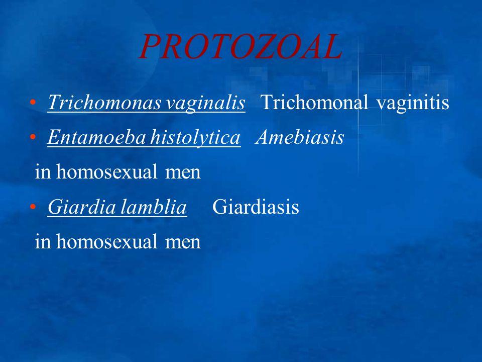 PROTOZOAL Trichomonas vaginalis Trichomonal vaginitis