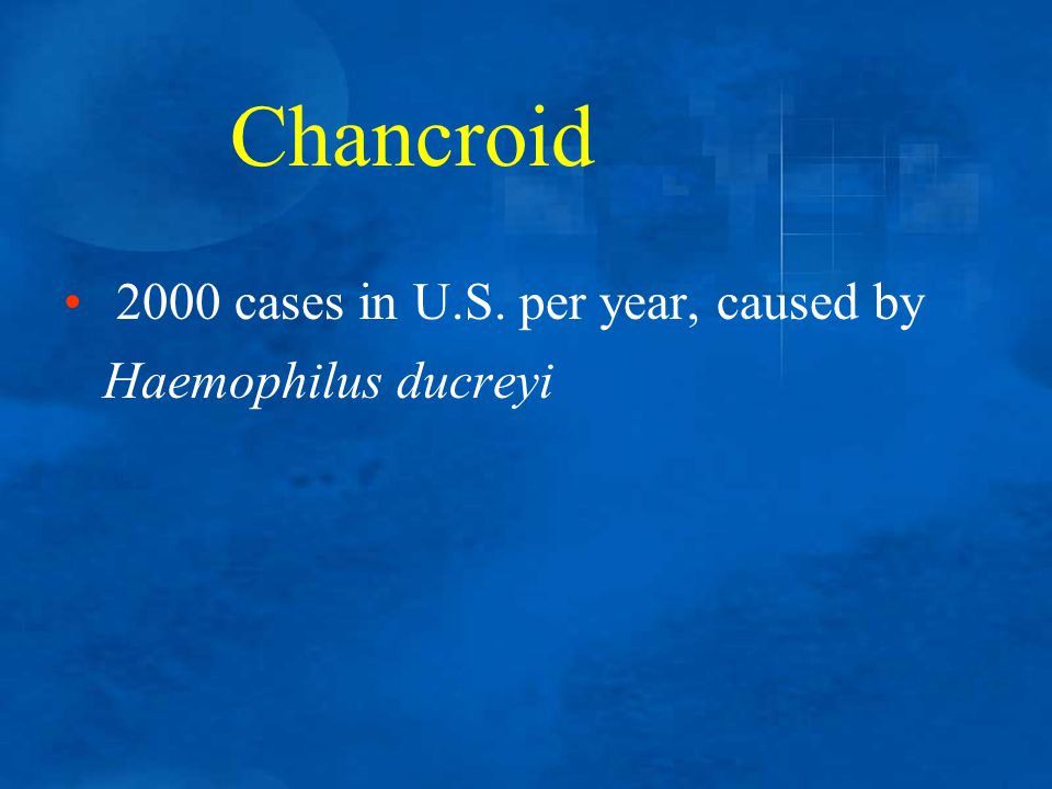 2000 cases in U.S. per year, caused by Haemophilus ducreyi