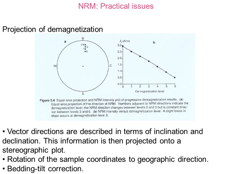 NRM: Practical issues Projection of demagnetization.