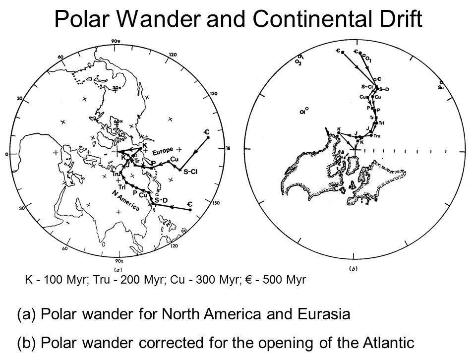 Polar Wander and Continental Drift