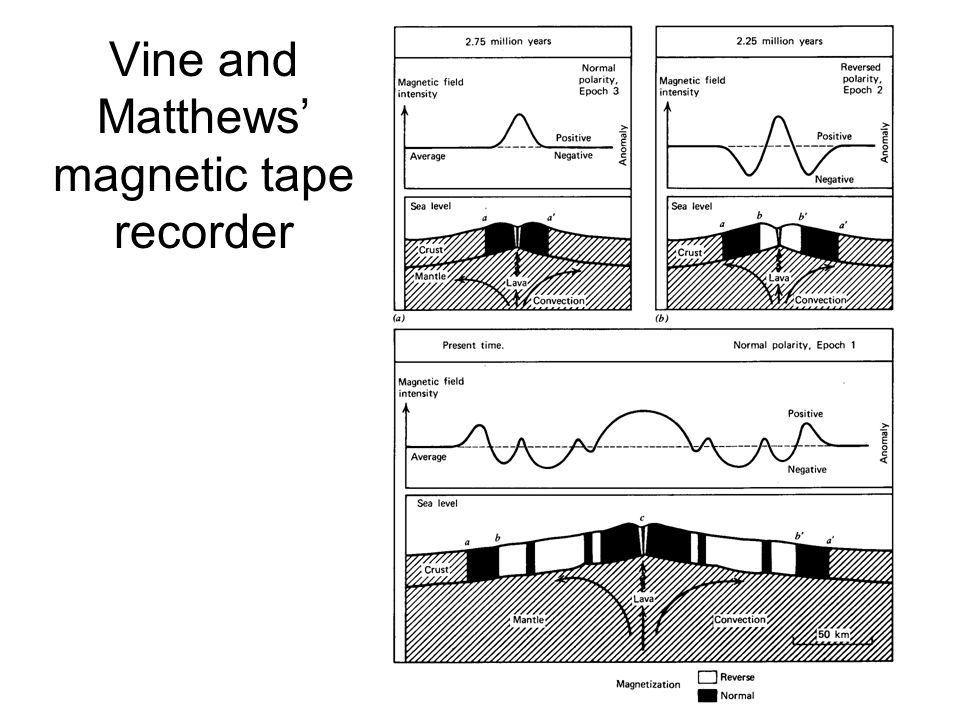 Vine and Matthews' magnetic tape recorder