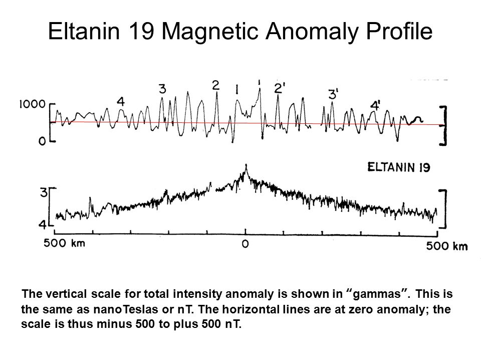 Eltanin 19 Magnetic Anomaly Profile