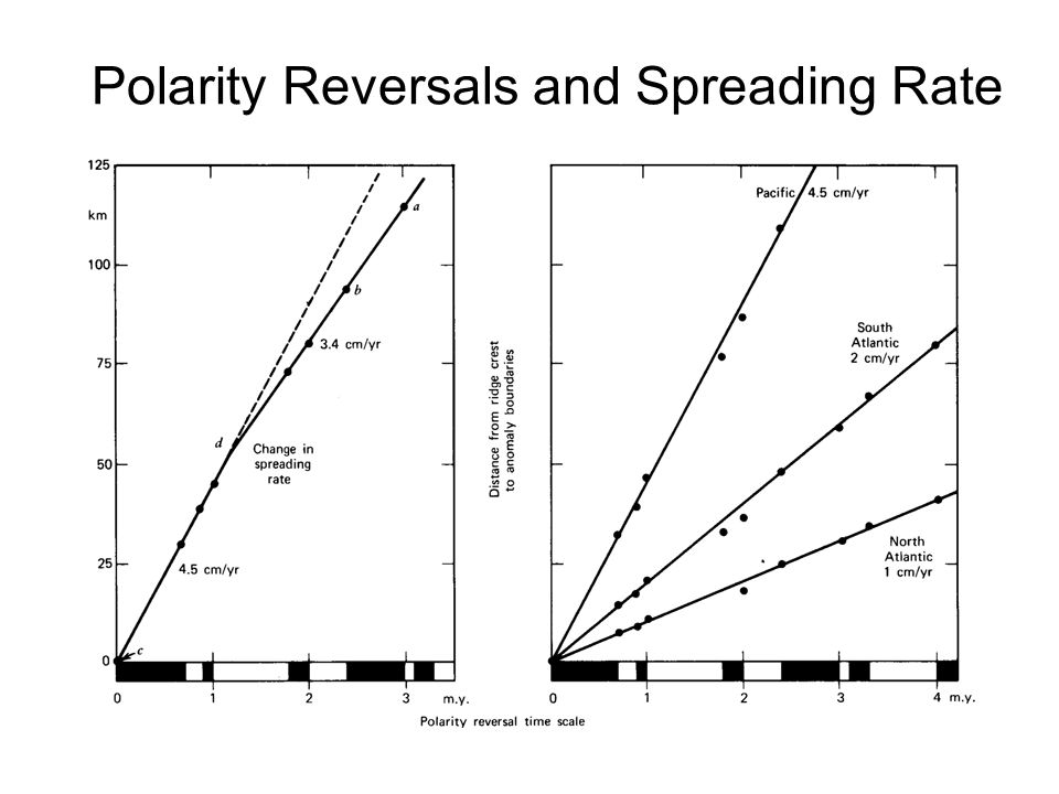 Polarity Reversals and Spreading Rate