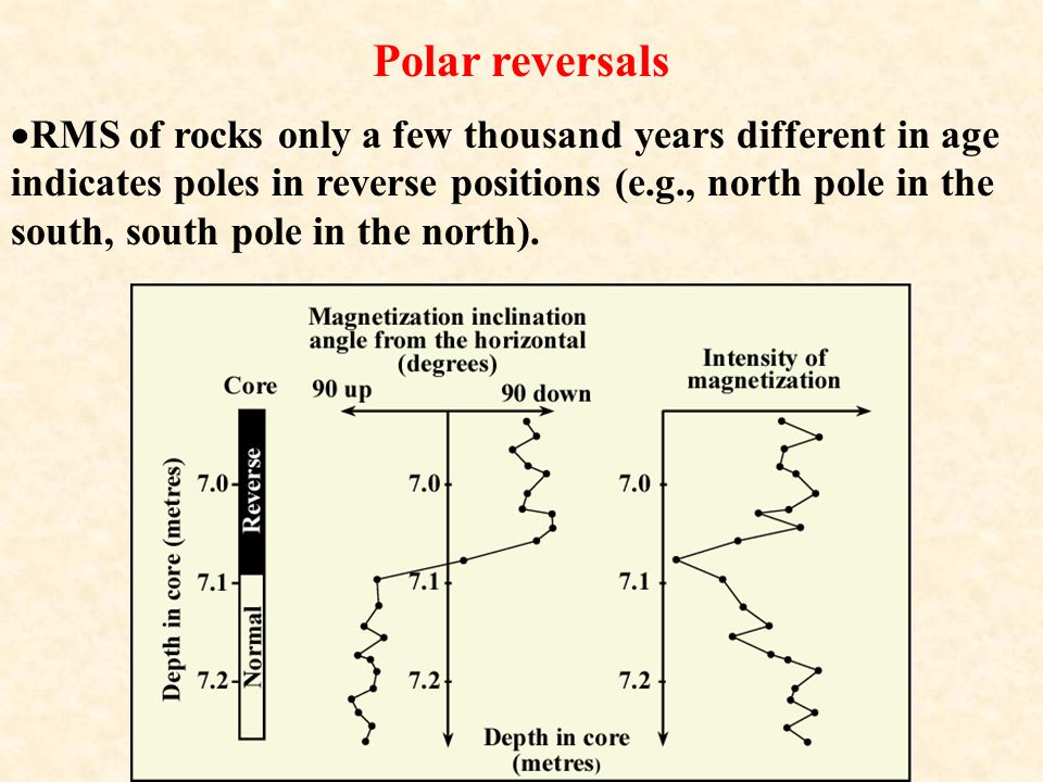 Polar reversals