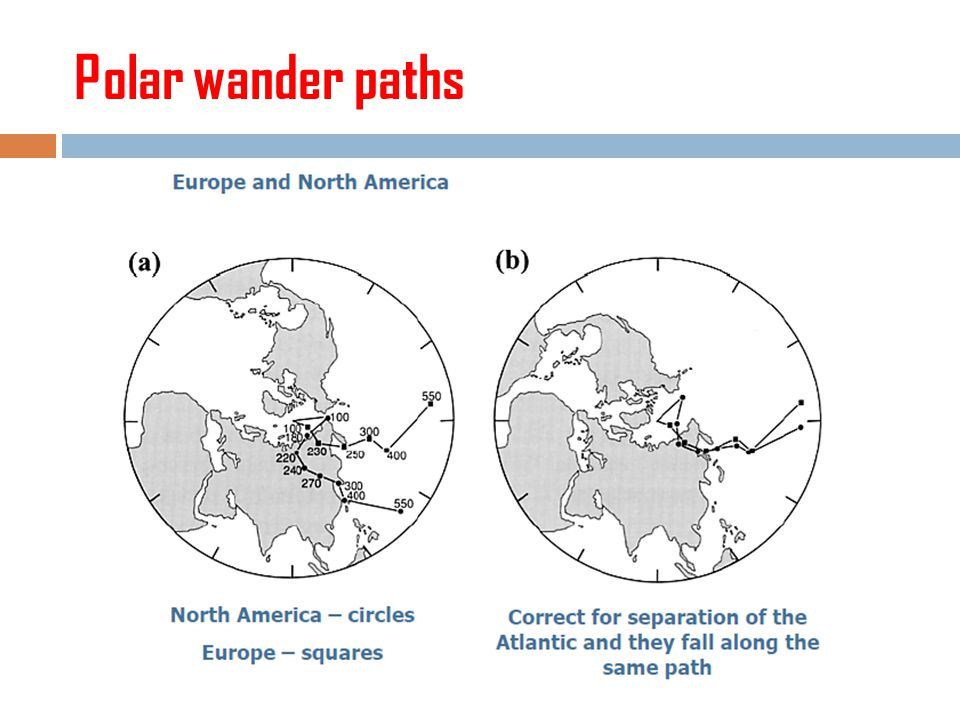 Polar wander paths