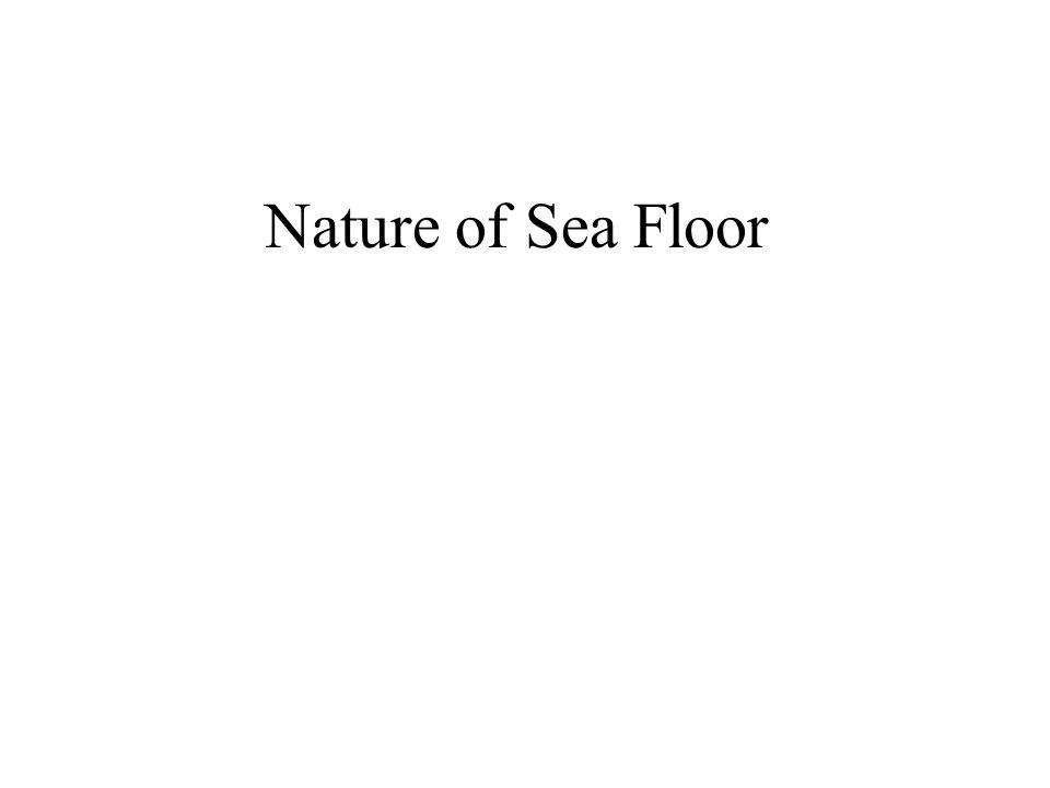Nature of Sea Floor