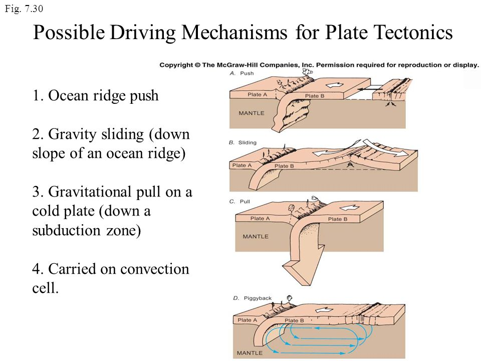 Possible Driving Mechanisms for Plate Tectonics
