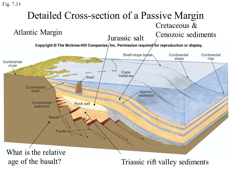 Detailed Cross-section of a Passive Margin