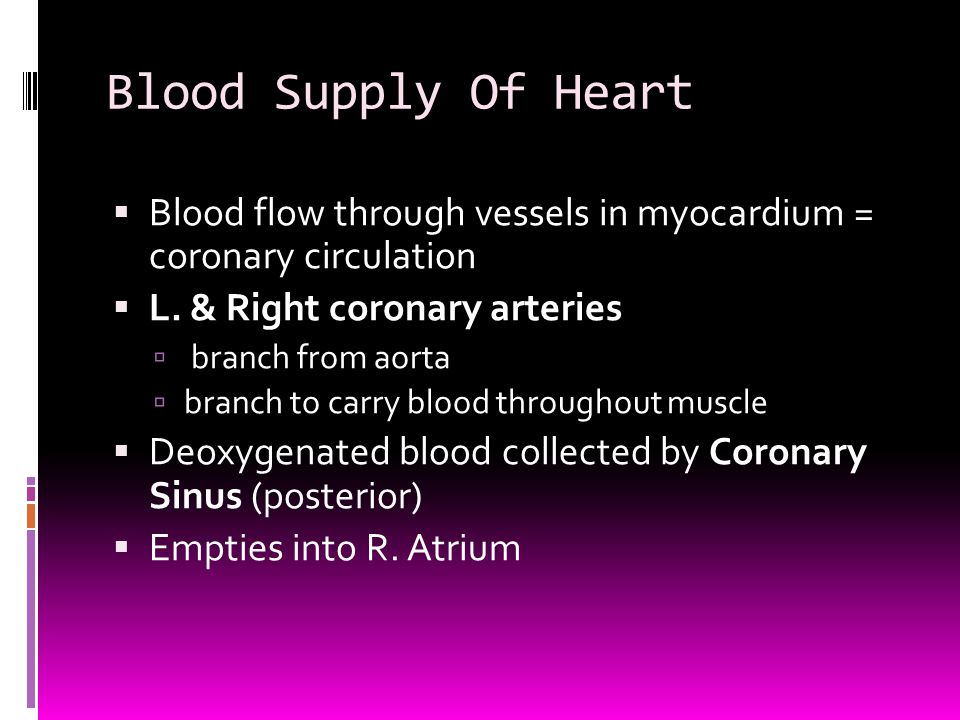 Blood Supply Of Heart Blood flow through vessels in myocardium = coronary circulation. L. & Right coronary arteries.