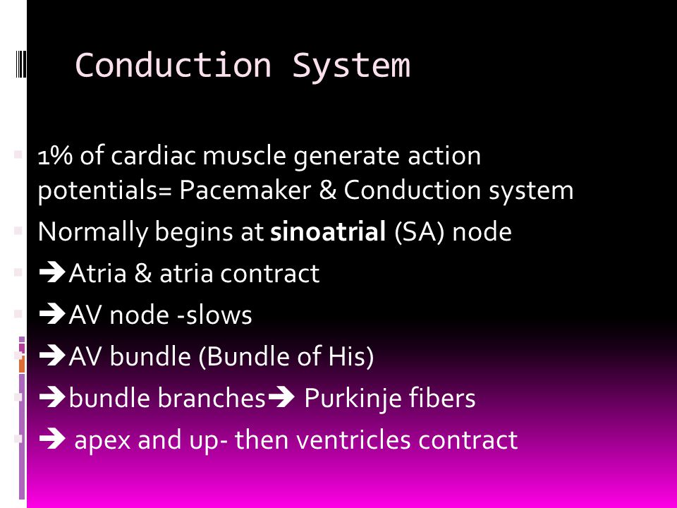 Conduction System 1% of cardiac muscle generate action potentials= Pacemaker & Conduction system. Normally begins at sinoatrial (SA) node.
