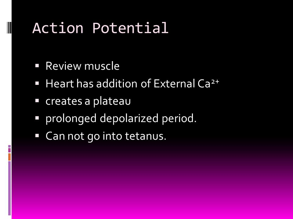 Action Potential Review muscle Heart has addition of External Ca2+