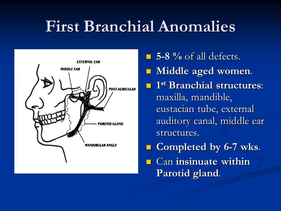 First Branchial Anomalies