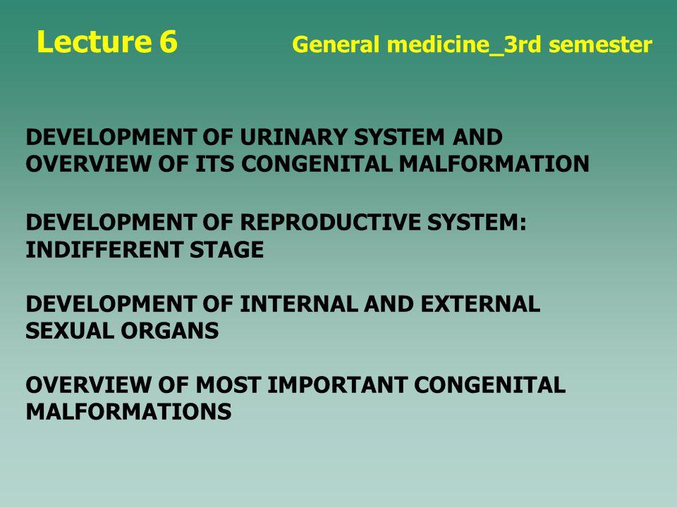 Lecture 6 General medicine_3rd semester