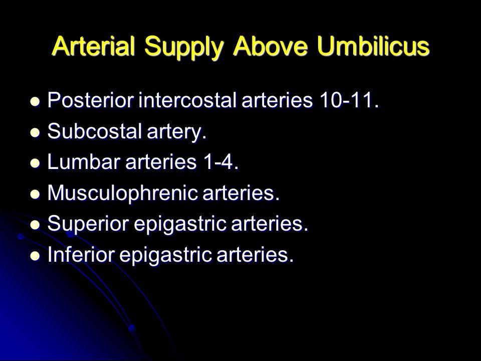 Arterial Supply Above Umbilicus