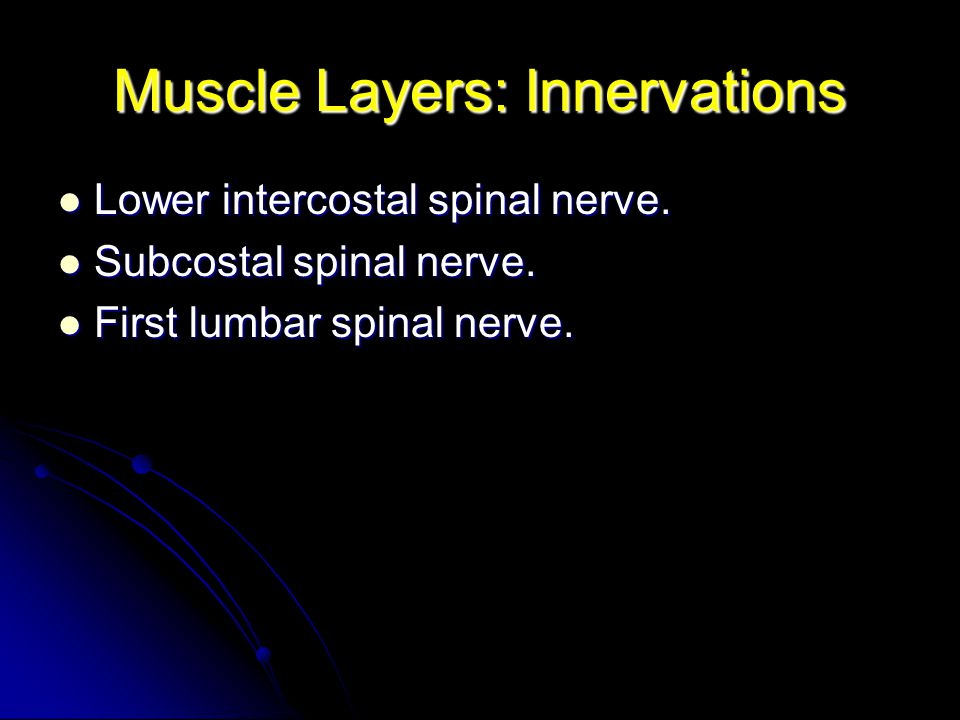 Muscle Layers: Innervations