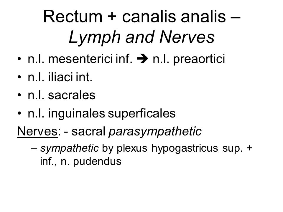 Rectum + canalis analis – Lymph and Nerves