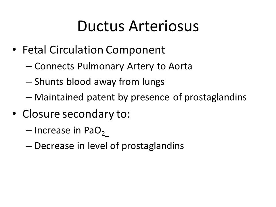 Ductus Arteriosus Fetal Circulation Component Closure secondary to: