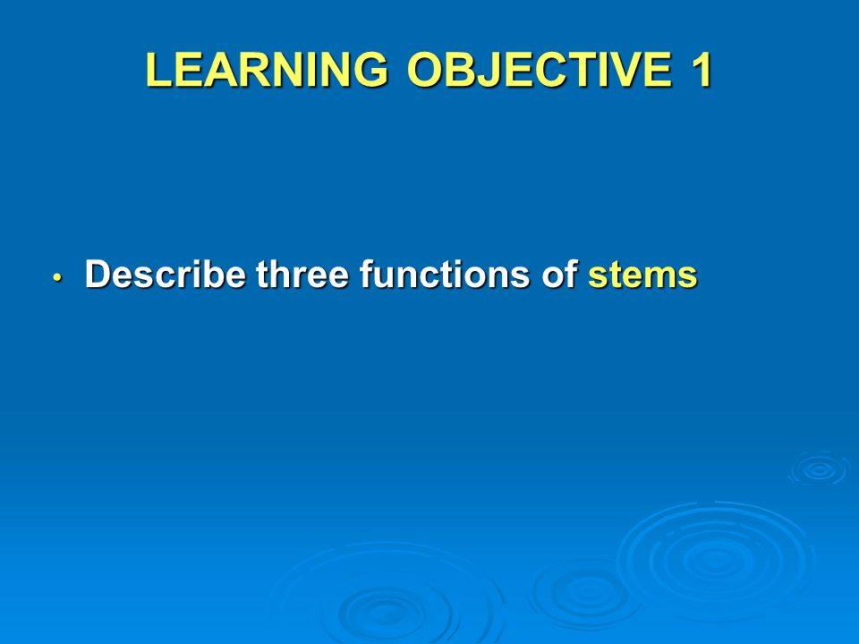 LEARNING OBJECTIVE 1 Describe three functions of stems