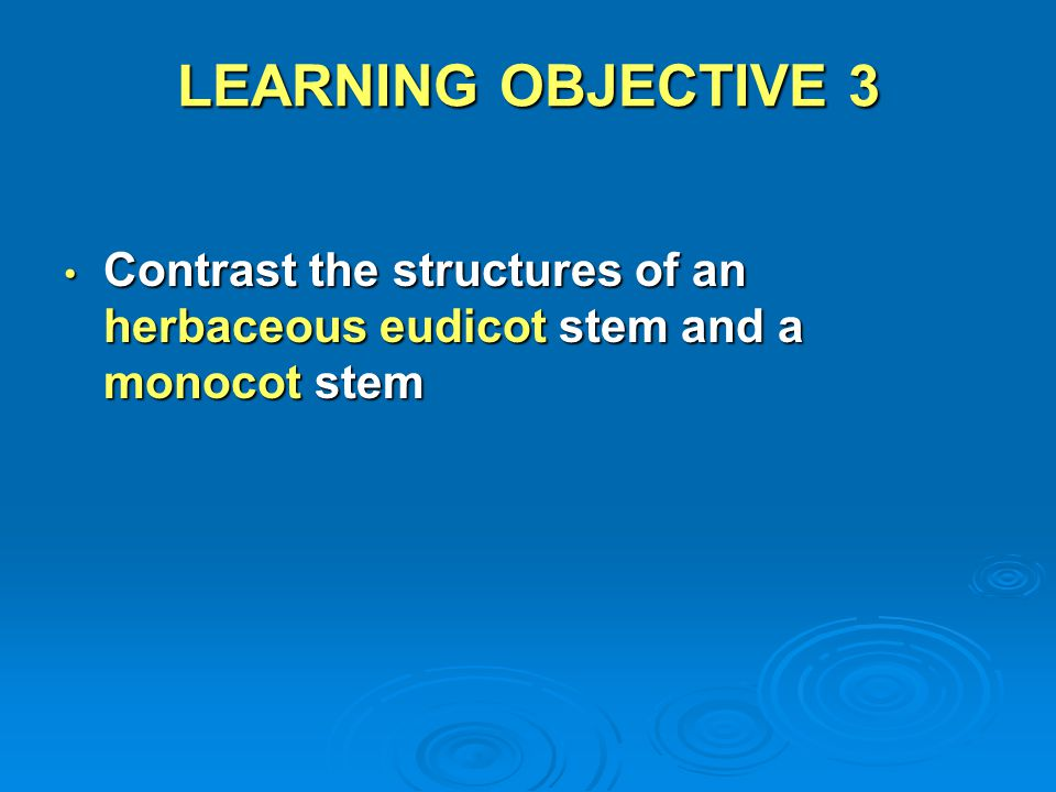 LEARNING OBJECTIVE 3 Contrast the structures of an herbaceous eudicot stem and a monocot stem