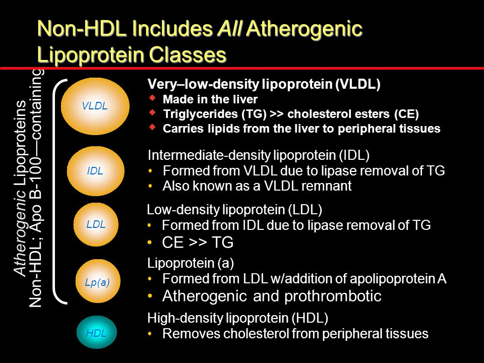 Non-HDL Includes All Atherogenic Lipoprotein Classes