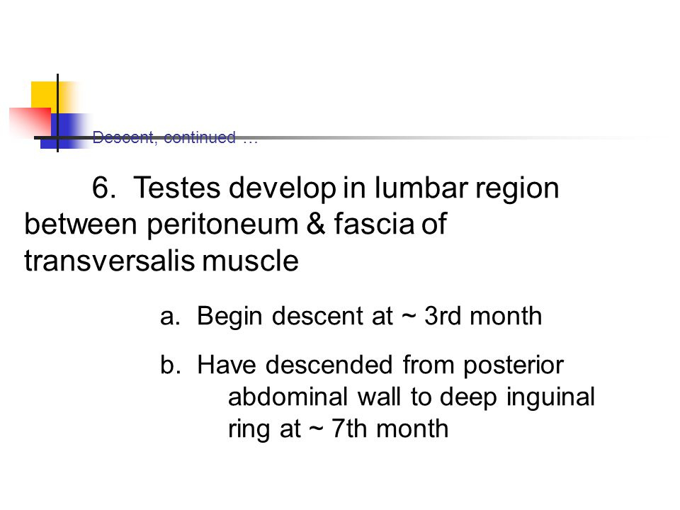 a. Begin descent at ~ 3rd month
