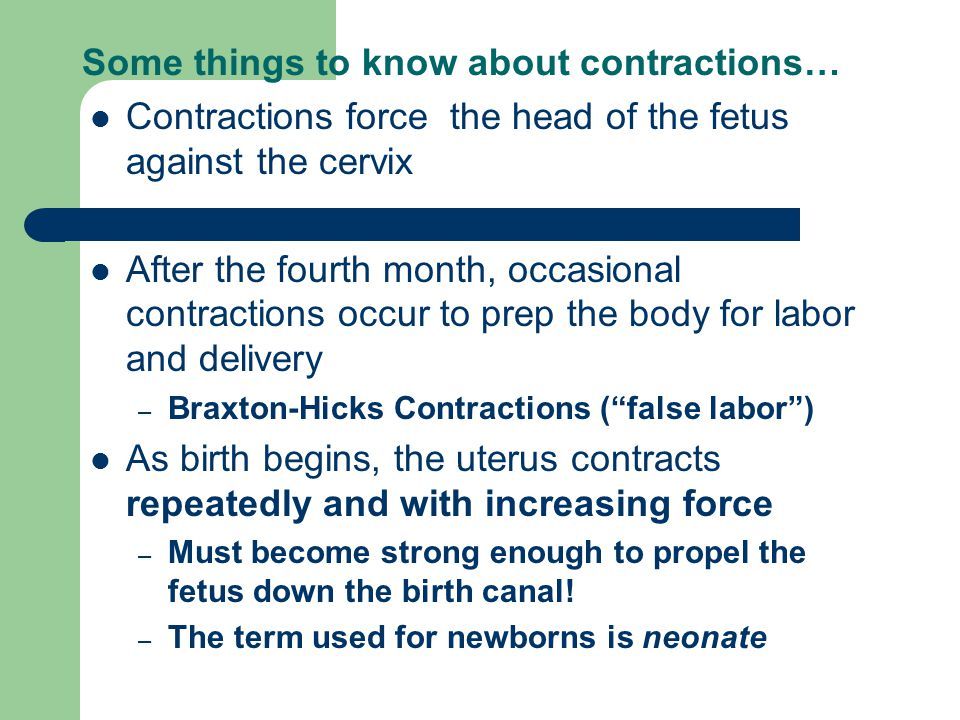 Some things to know about contractions…
