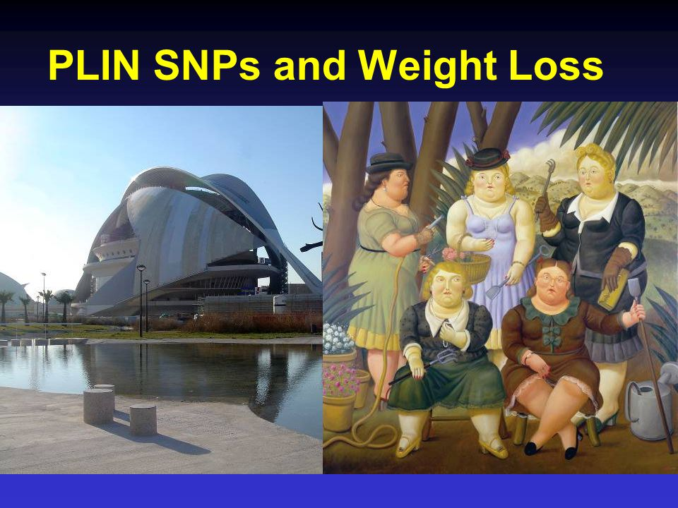 PLIN SNPs and Weight Loss