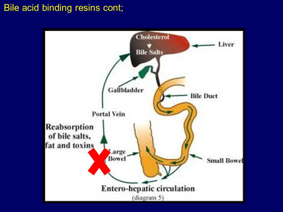 Bile acid binding resins cont;