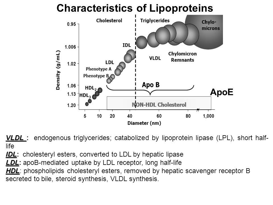 Characteristics of Lipoproteins