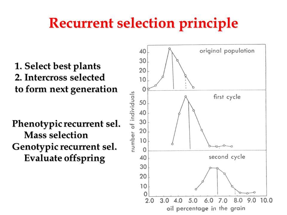 Recurrent selection principle