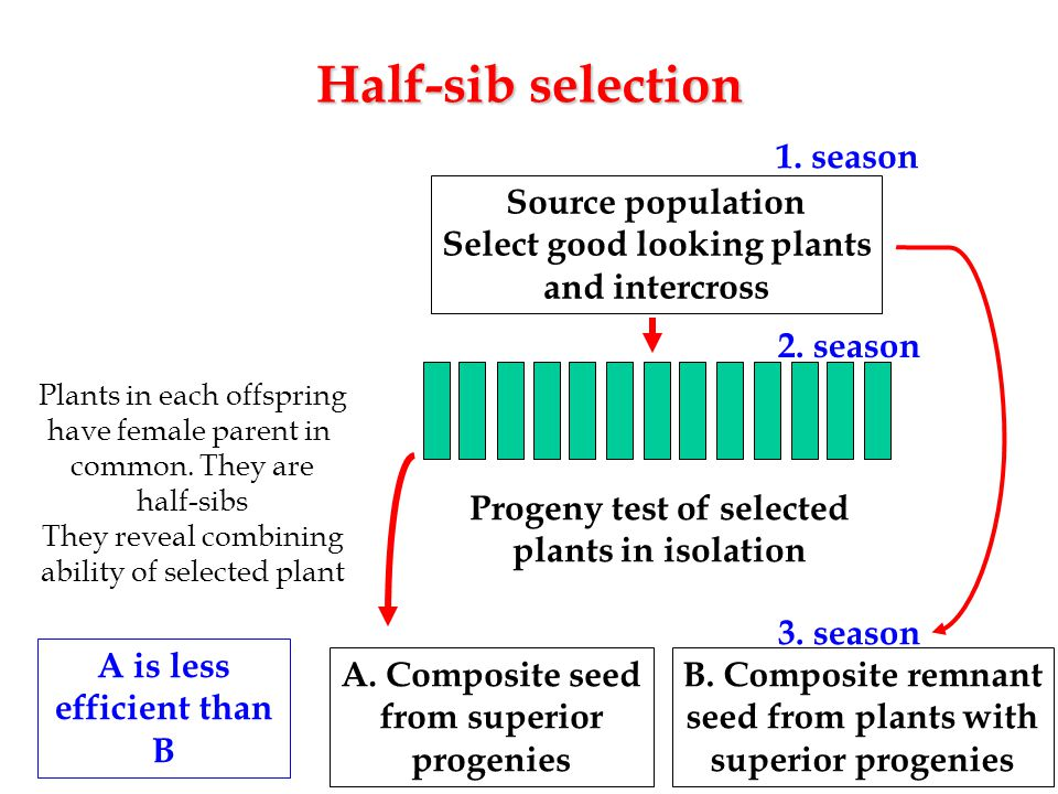 Select good looking plants