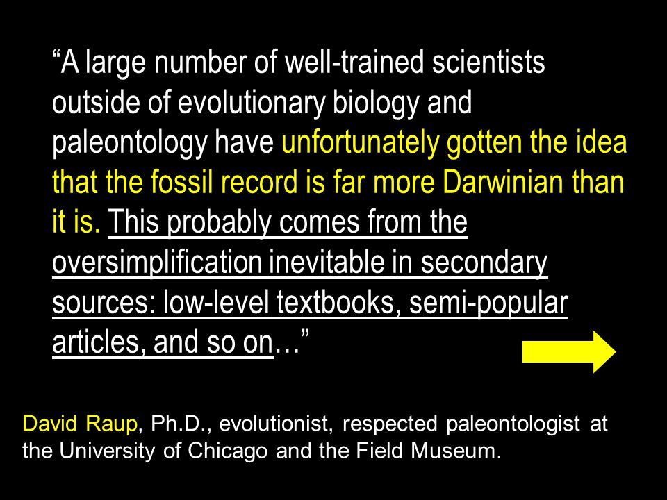 A large number of well-trained scientists outside of evolutionary biology and paleontology have unfortunately gotten the idea that the fossil record is far more Darwinian than it is. This probably comes from the oversimplification inevitable in secondary sources: low-level textbooks, semi-popular articles, and so on…