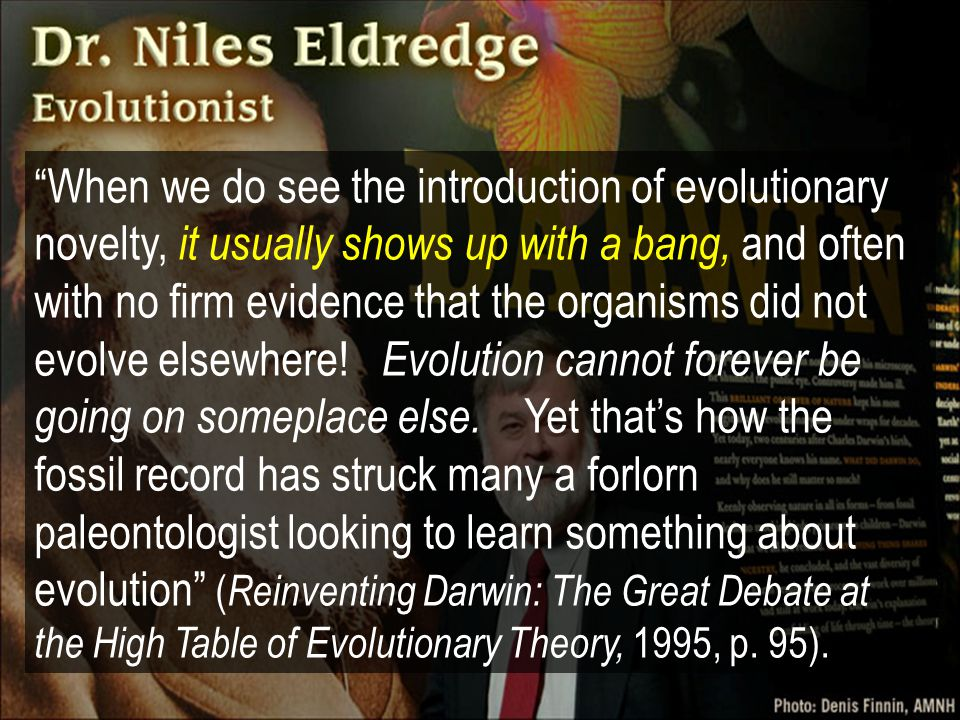 When we do see the introduction of evolutionary novelty, it usually shows up with a bang, and often with no firm evidence that the organisms did not evolve elsewhere! Evolution cannot forever be