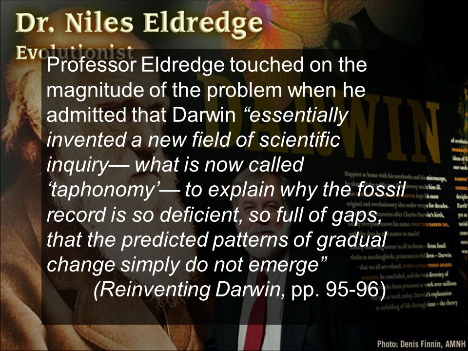 Professor Eldredge touched on the magnitude of the problem when he admitted that Darwin essentially invented a new field of scientific inquiry— what is now called 'taphonomy'— to explain why the fossil record is so deficient, so full of gaps, that the predicted patterns of gradual change simply do not emerge