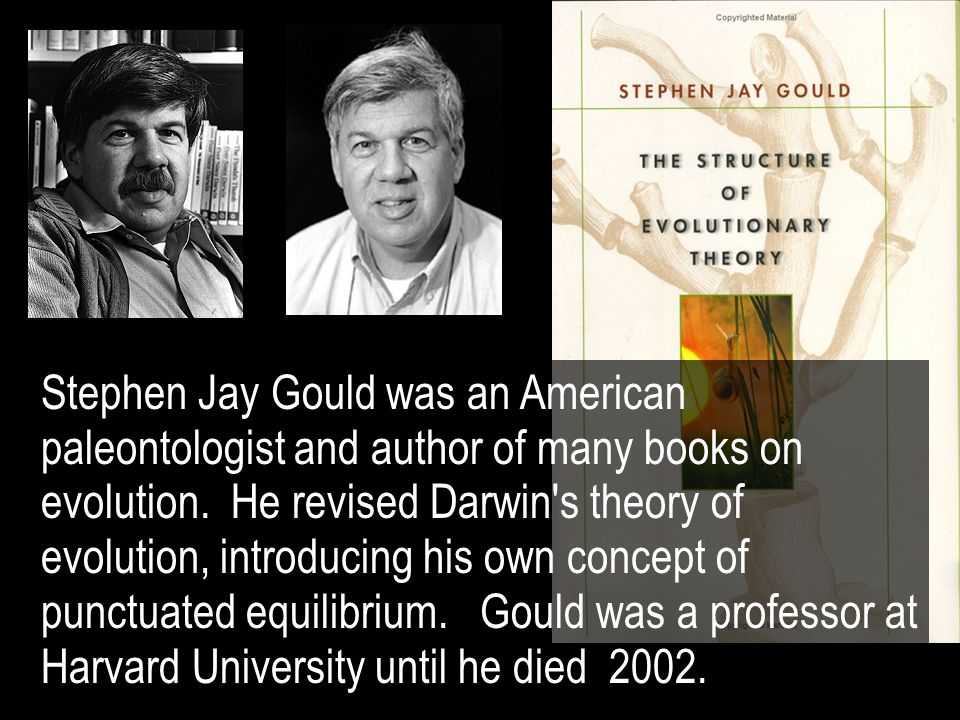 Stephen Jay Gould was an American paleontologist and author of many books on evolution.
