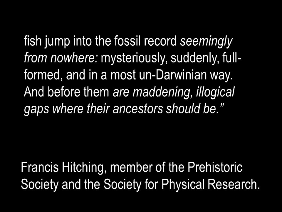 fish jump into the fossil record seemingly from nowhere: mysteriously, suddenly, full-formed, and in a most un-Darwinian way. And before them are maddening, illogical gaps where their ancestors should be.