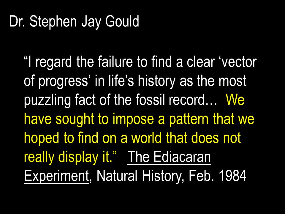 Dr. Stephen Jay Gould
