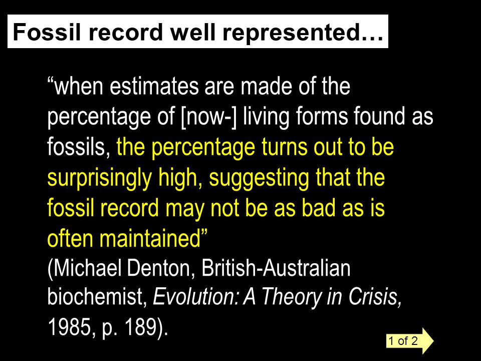 fossil record may not be as bad as is often maintained