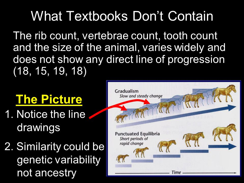 What Textbooks Don't Contain