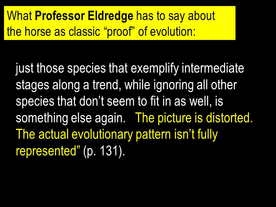 What Professor Eldredge has to say about the horse as classic proof of evolution: