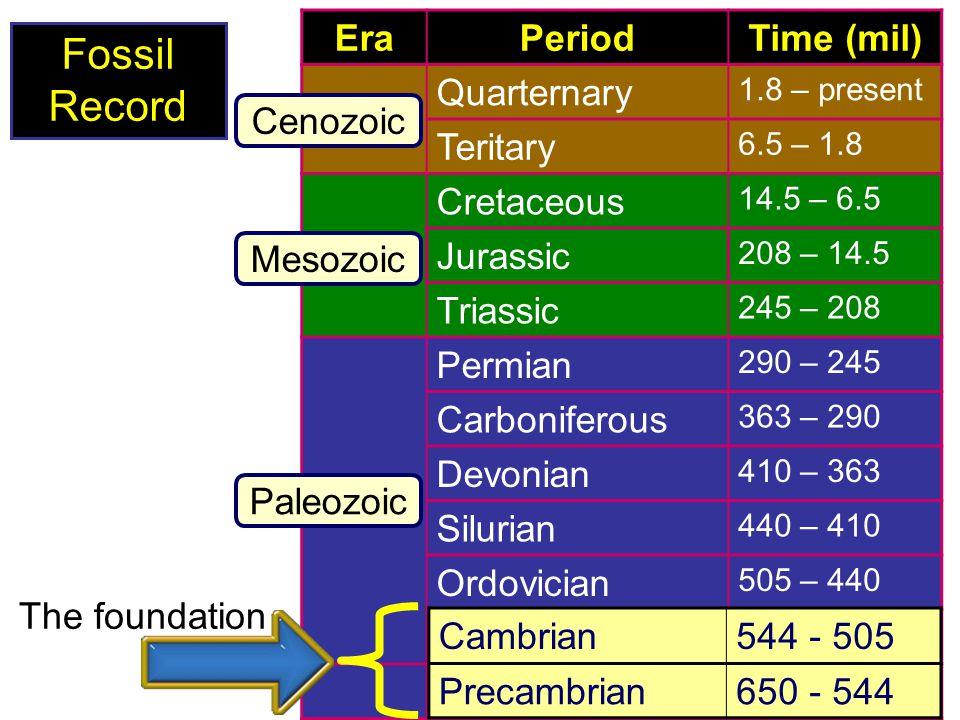 Fossil Record Era Period Time (mil) Quarternary Teritary Cretaceous