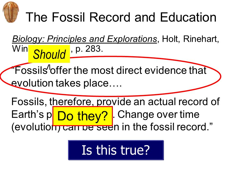 The Fossil Record and Education