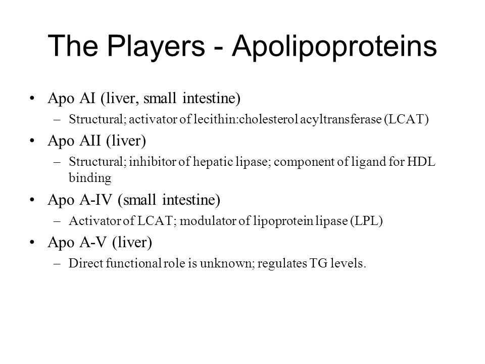 The Players - Apolipoproteins