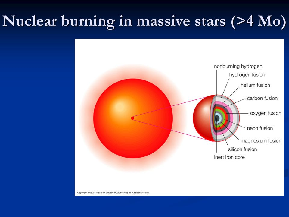 Nuclear burning in massive stars (>4 Mo)