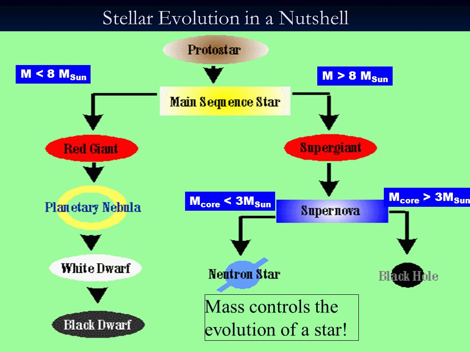 Stellar Evolution in a Nutshell