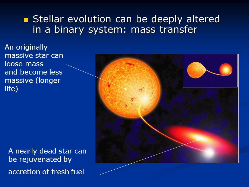 Stellar evolution can be deeply altered in a binary system: mass transfer
